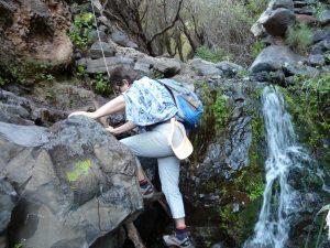 Weg zum Wasserfall